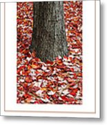 Autumn Tree Poster Metal Print