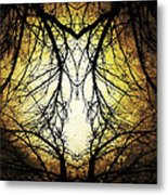 Autumn Tree Veins Metal Print