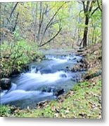 Autumn Tributary Metal Print