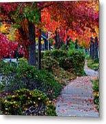 Autumn Walk In Grants Pass Metal Print