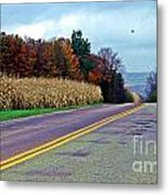 Autumn Watch Metal Print