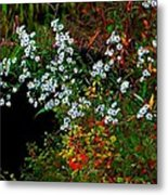 Autumn Wildflowers Metal Print