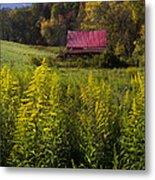 Autumn Wildflowers Metal Print by Debra and Dave Vanderlaan