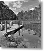 Autumn Without Color Metal Print