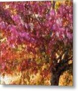 Autumn Xvii Metal Print