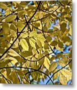 Autumn Yellow Metal Print
