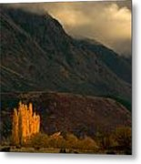 Autumnal Light Metal Print