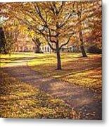 Autumnal Park Metal Print