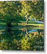 Autumns Beauty Metal Print