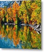 Autumn's Beauty Reflected Metal Print