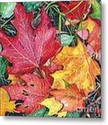 Autumn's Carpet Metal Print