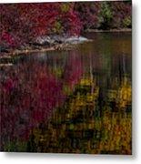 Autumns Color Pallette Metal Print