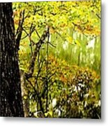 Autumn's First Reflections II Metal Print