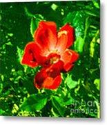 Autumn's  Flower Metal Print