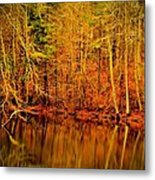 Autumn's Past Metal Print