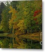 Autumns Reflection Metal Print