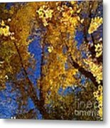 Autumns Reflections Metal Print by Steven Milner