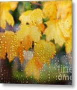 Autumns Tears Metal Print