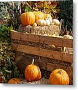 Autumntime Pumpkintime Metal Print