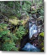 Avalanche Creek In Cedar Forest Metal Print