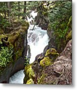 Avalanche Creek In Glacier Np-mt Metal Print