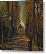 Avenue Of Poplars In Autumn Metal Print