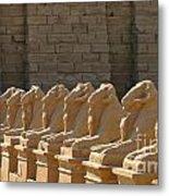 Avenue Of Sphinxes Metal Print