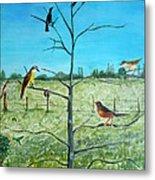 Aves En Comarca Del Sol Metal Print