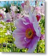 Avoca Wildflowers Metal Print