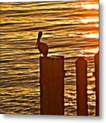 Late For Dinner Metal Print