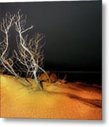 Awaiting The Light I - Outer Banks Metal Print