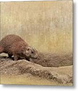Away Quickly Metal Print