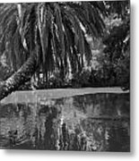 Awesome Pond 1 Metal Print by Denise Mazzocco