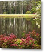 Azaleas And Reflection Pond Metal Print