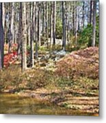 Azaleas By The Pond's Edge Metal Print