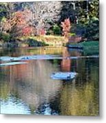 Azelea Asticou Autumn Reflections Metal Print