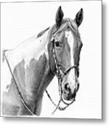 B And W Study Metal Print by JQ Licensing