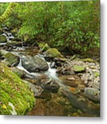 Kerry River Ireland Metal Print by Pro Shutterblade