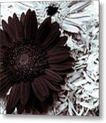 B/w Flower Metal Print by Ankeeta Bansal