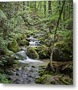 Babbling Baxter Brook Metal Print