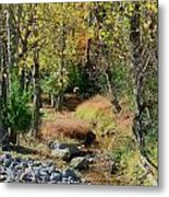 Babbling Brook IIi Metal Print