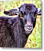 Baby Billy Metal Print