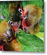 Baby Bird Nest In Hong Kong Bird Market Metal Print