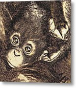 Baby Orangutan Metal Print