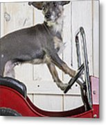 Baby You Can Drive My Car Metal Print