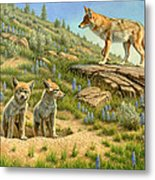Babysitter  -  Coyotes Metal Print by Paul Krapf