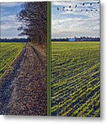 Back Forty - Gently Cross Your Eyes And Focus On The Middle Image Metal Print