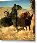 Back Off  Metal Print by Jeanne  Bencich-Nations