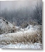 Back Woods Winter Metal Print
