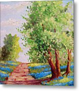 Backroad Bluebonnets Metal Print